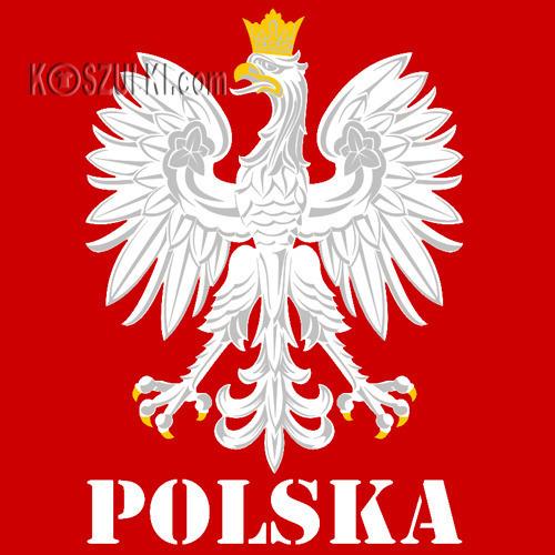 Bluza z kapturem dziecięca Orzeł Polska Nazwisko i numer